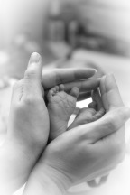 baby-feet-402844_960_720